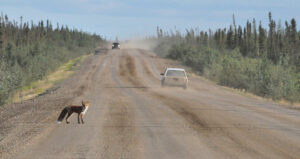 Dempster Highway, Canadá