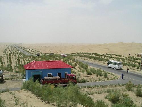 Casa del desierto del Tarim