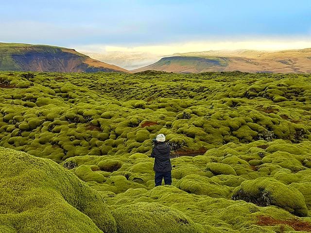 Llanura de lava de Eldhraun